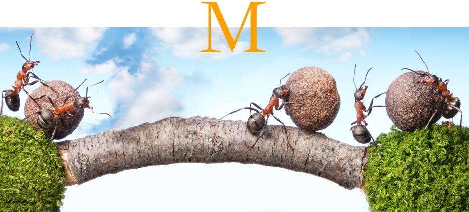 Mirati-sfeer05-936x424